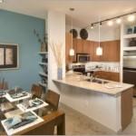 Alta Lakeshore Lofts Apartment Kitchen