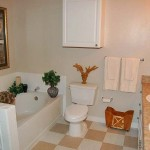 Bell Valley Ranch Apartment Bathroom