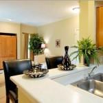 Jefferson Park Apartment Kitchen