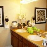Laguna Vista Apartment Washroom