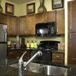 Lincoln Las Colinas Apartment Kitchen.