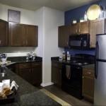 Lincoln Las Colinas Apartment Kitchen