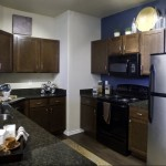 Lincoln Las Colinas Apartment Kitchen