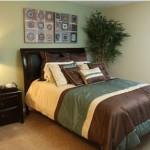 Parkridge Place at Las Colinas Apartment Bedroom