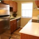 Parkridge Place at Las Colinas Apartment Kitchen