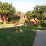 Shadows of Cottonwood Apartment Property Ground