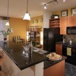 Windsor at Las Colinas Apartment Kitchen